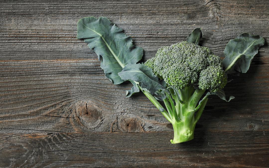 Todo sobre el brócoli: cultivo, beneficios y recetas